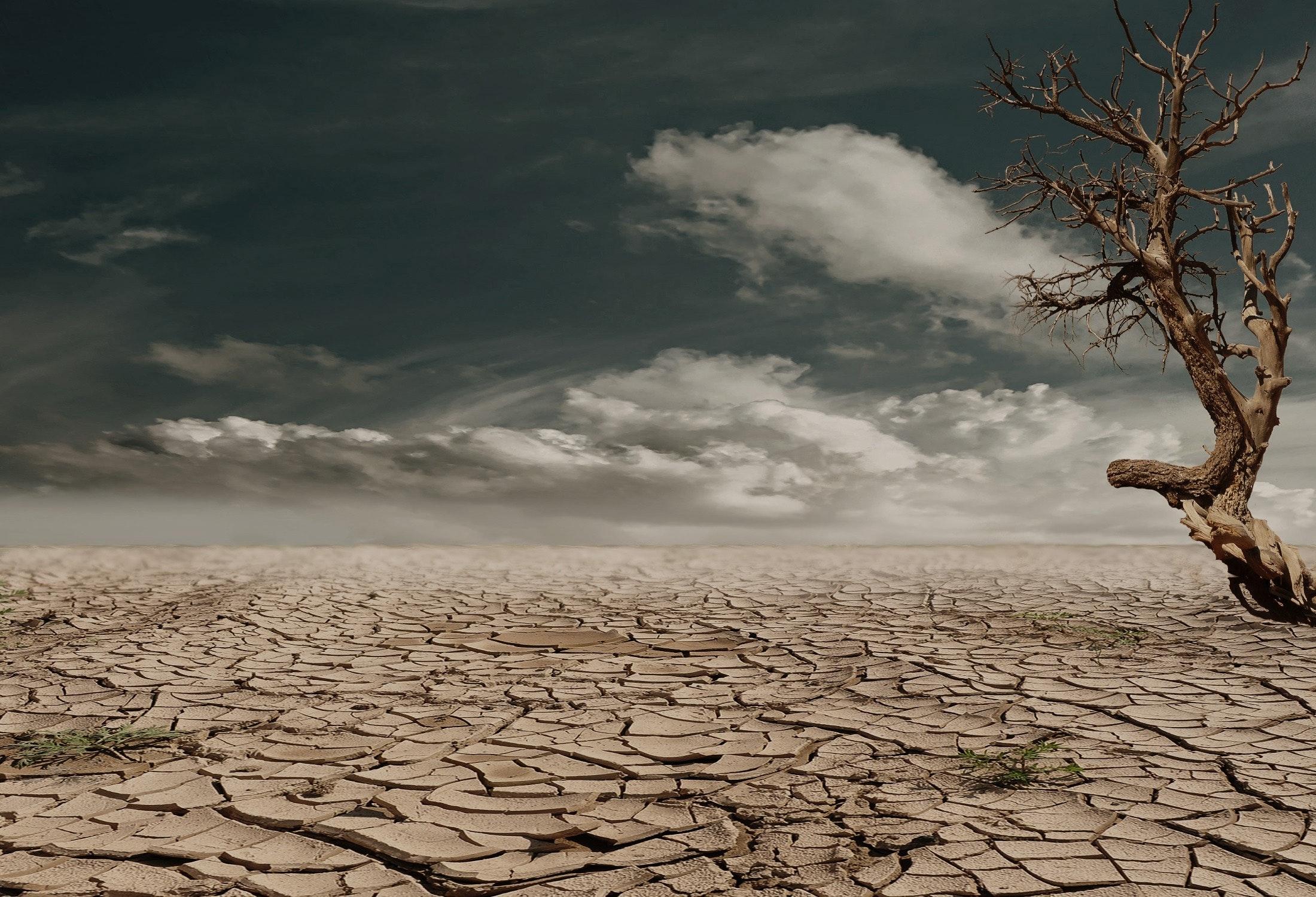 Senza partecipazione non c'è lotta all'emergenza climatica